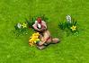 świstak z kwiatuszkami.png