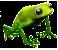 żaba.png