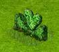 żywopłot z grabó w kształcie serca.png