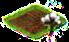 bawełna ekologiczna.png