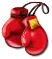 boxinggloves.png