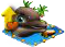 delfiny p.png
