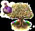 drzewko pachnące.png