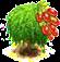 drzewo goji.png