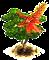 Drzewo koralowe.png