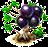 Drzewo plinii cauliflory.png