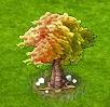 drzewo tęczowe.png