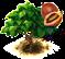 Drzewo tamarillo.png