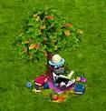 drzewo wiedzy.PNG