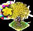 drzewo złotolistne.png