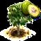 Drzewo zulubelki.png