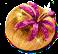 fruitdealersjul2016wonderfruit.png