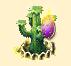 kaktus gromniczny xl.PNG