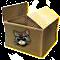 kartonowe pudełko.png