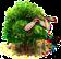 klon palmowy.png