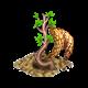 Krzywe drzewo.png