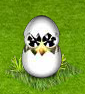 kurczaczek 1.png