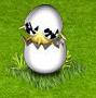 kurczaczek 2.png