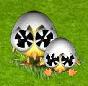 kurczaczek 4.png