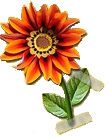 kwiatek.png