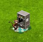 małpie.png