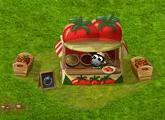 nasiona pomidora.PNG
