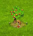 owocowy n.png