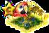 papugi ++.png