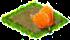 pomarajczowe tujlipany.png