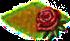 róże.png