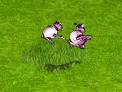 różowa owca.png