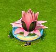 romantyczna lilia wodna.png