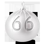 srebrna 66.png