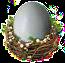 strusie jaja.png