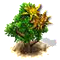 sweetgum_upgrade_0.png