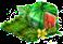 Sześcienny arbuz.png