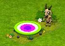 trampolina.png