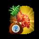 """Zagadkowe tropikalne drzewo """"Okinawa"""".png"""