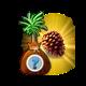 """Zagadkowe tropikalne drzewo """"Sirri"""".png"""